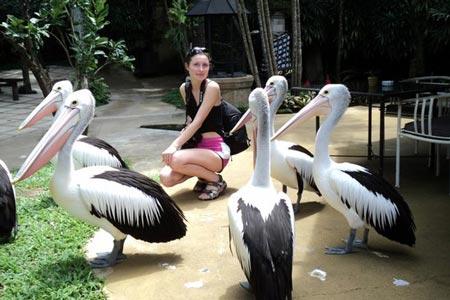 پارک پرندگان تور بالی