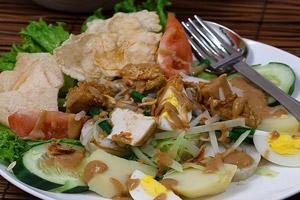 غذاهای تور بالی گادو گادو